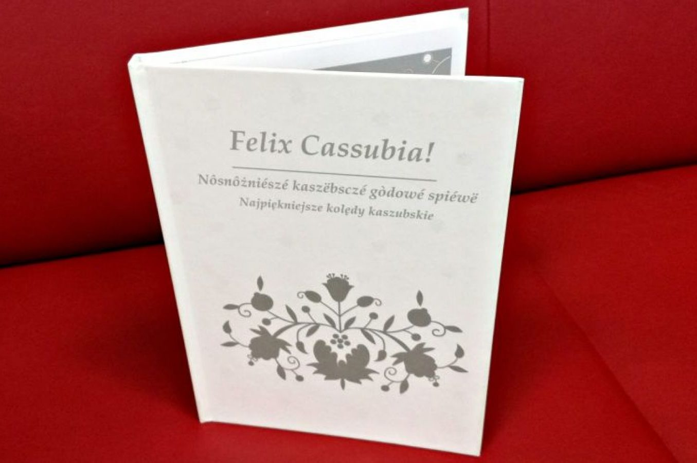 """płyta """"Felix Cassubia"""""""